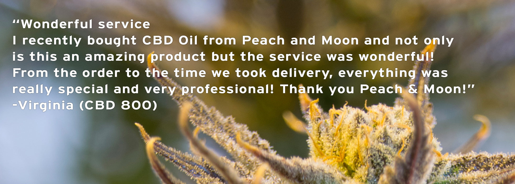 CBD 800 (Organic) - Set of 2 - Peach & Moon Organics