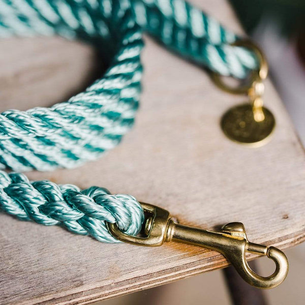 Sea Foam Green Rope Dog Lead - The Stately Hound
