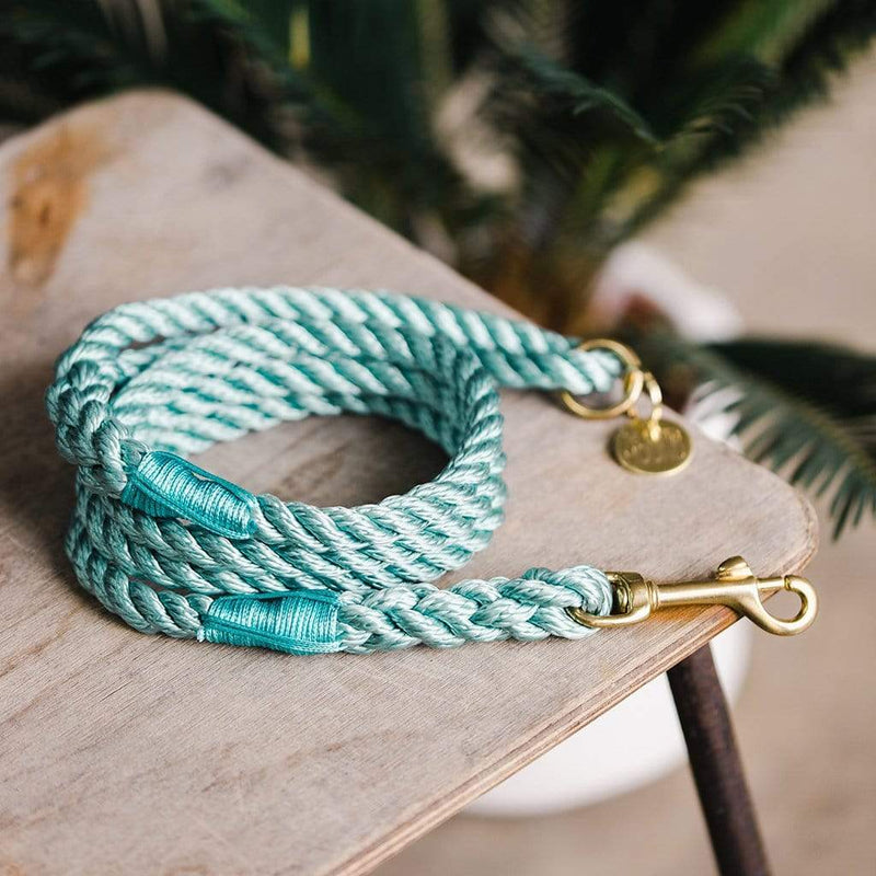 Seafoam Green Rope Dog Lead, 5ft Long