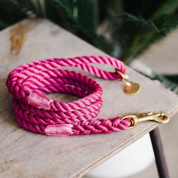 Fuchsia Rope Dog Lead - The Stately Hound