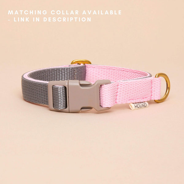 Two-Tone Lead - Pink & Grey - The Stately Hound