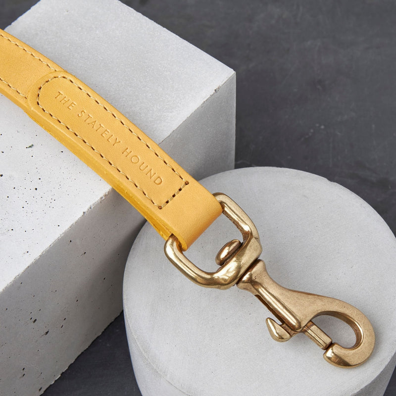 The 'Seasalter' Leather Dog Lead in Yellow