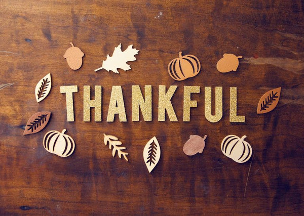 Thanksgiving Reflections 2020: Why We Can Still Be Grateful