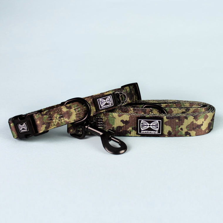 Collar & Lead: Sergeant Stripe Set
