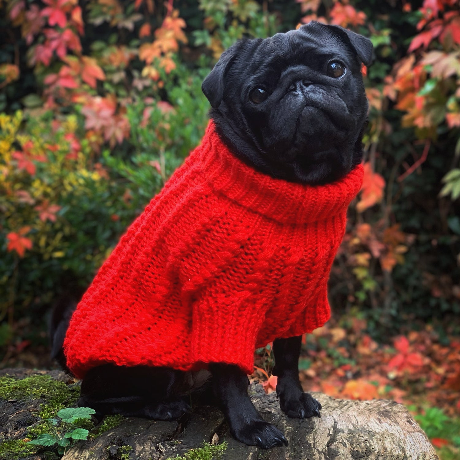 Cosy Knitted Jumper: Rose Red