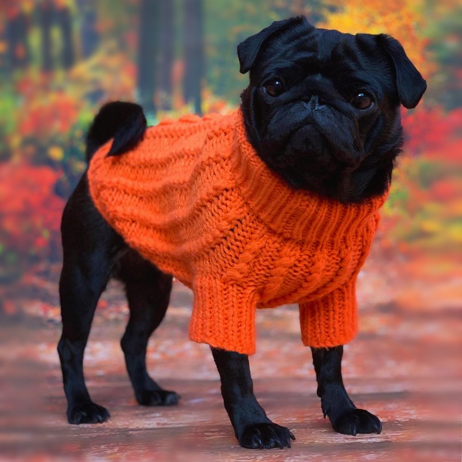 LIMITED EDITION! Cosy Knitted Jumper: Pumpkin Orange