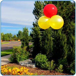 Cluster Pole Kit (3 Balloon) - Big Shot Promotions