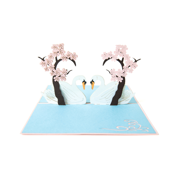 Swans with Blossom