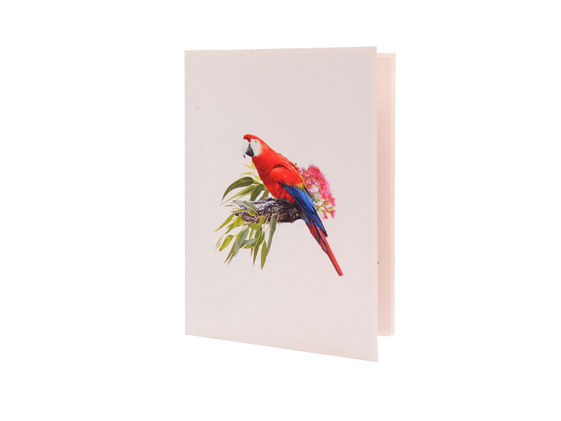 Pop Up Bird Card