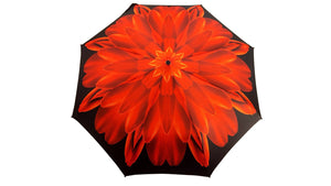 Red Flower Women's Folding Umbrella with Silver-Plated Handle - il-marchesato