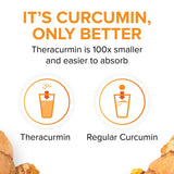 Natural Factors - CurcuminRich Double Strength Theracurmin