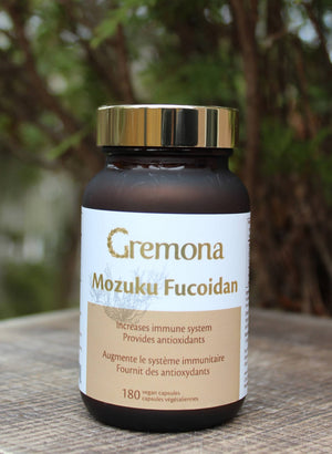 Mozuku Fucoidan Increases Immune System, Provide Antioxidants
