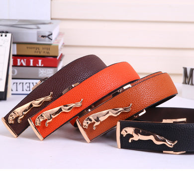 Unisex Designer Belt 4 Colors - Belt