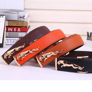 Unisex Designer Belt 4 Colors