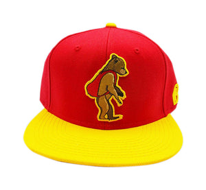 U.S.C Colorway Cork Grizzly Snapback