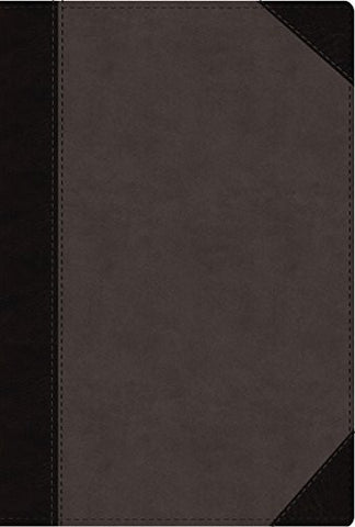 NIV, Faithlife Study Bible, Imitation Leather, Gray/Black, Indexed: Intriguing Insights to Inform Your Faith