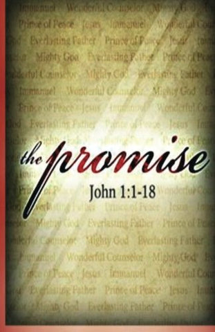The Promise: The Secret Revealed