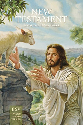New Testament Outreach Bible