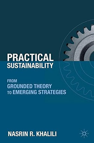 Practical Sustainability: From Grounded Theory to Emerging Strategies