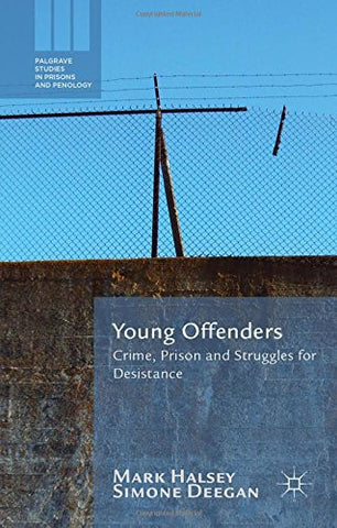Young Offenders: Crime, Prison and Struggles for Desistance (Palgrave Studies in Prisons and Penology)
