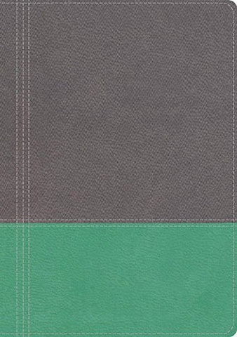 NKJV, The Modern Life Study Bible, Imitation Leather, Gray, Indexed: God's Word for Our World