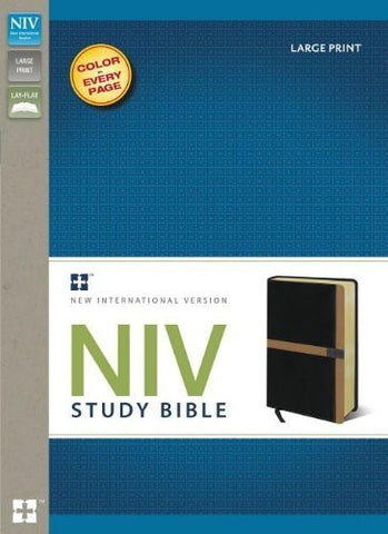 NIV Study Bible, Large Print, Imitation Leather, Black/Tan, Red Letter Edition