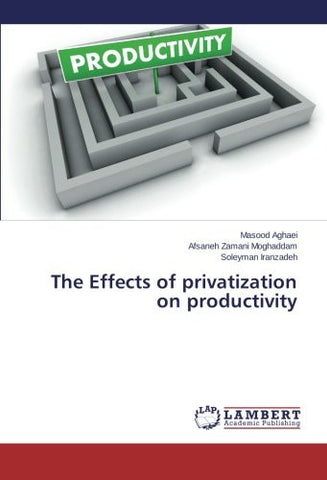 The Effects of privatization on productivity