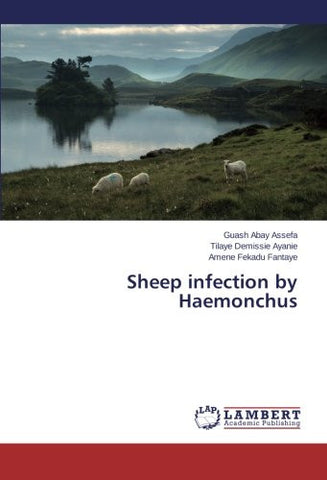 Sheep infection by Haemonchus