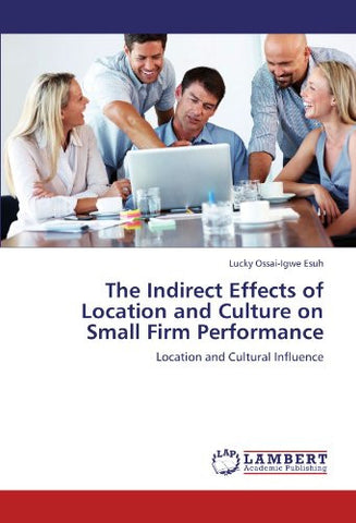 The Indirect Effects of Location and Culture on Small Firm Performance: Location and Cultural Influence
