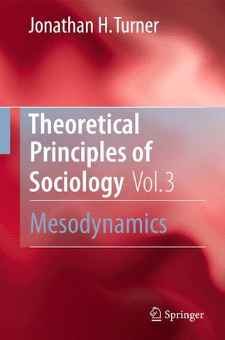 Theoretical Principles of Sociology, Volume 3: Mesodynamics