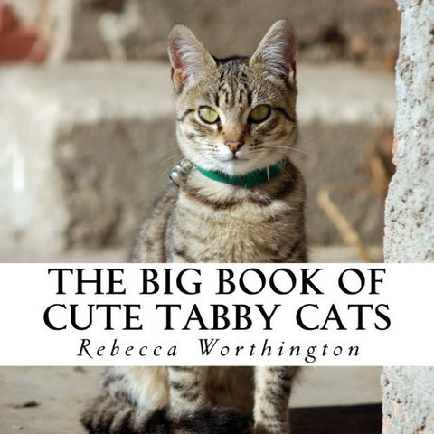 The Big Book of Cute Tabby Cats: A text-free book for Seniors and Alzheimer's patients