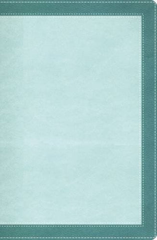 NIV, The Woman's Study Bible, Imitation Leather, Turquoise, Indexed (Sign)