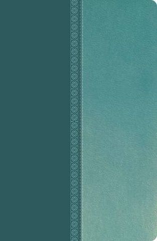 NKJV, UltraSlim Reference Bible, Imitation Leather, Turquoise, Center Column (Classic)