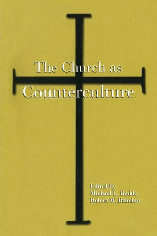The Church as Counterculture (Suny Series, Popular Culture & Political Change)