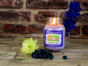 Blueberry and Vanilla Scented Candle