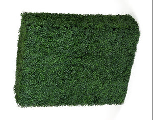 Portable Boxwood Hedge UV Stabilised 75cm High 100cm Long - Online Discounts