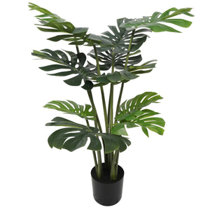 Split Philodendron (Split Leaf) 120cm