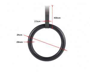 Gym Rings Hoop Gymnastic Exercise Training Fit