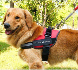 Adjustable Dog Harness Vest XL RED