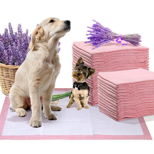 idropship 200 Pcs 60x60 cm Pet Puppy Toilet Training Pads Absorbent Lavender Scent
