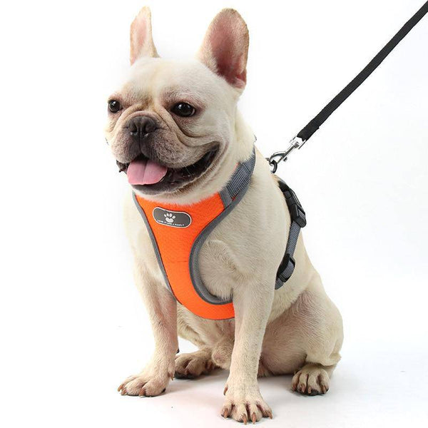 Adjustable Dog Harness Vest Orange XL
