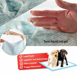 400pcs 60x60cm Puppy Pet Dog Indoor Cat Toilet Training Pads Absorbent New