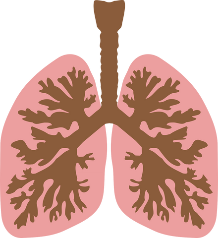 There are three main types of oxygen therapy devices.