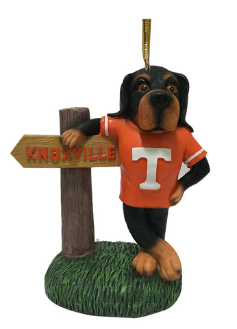 Tennessee Volunteers Mascot With Sign