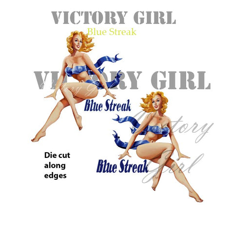 D1065 Blue Streak Nose Art