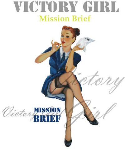 D1108 Mission Brief - no Background