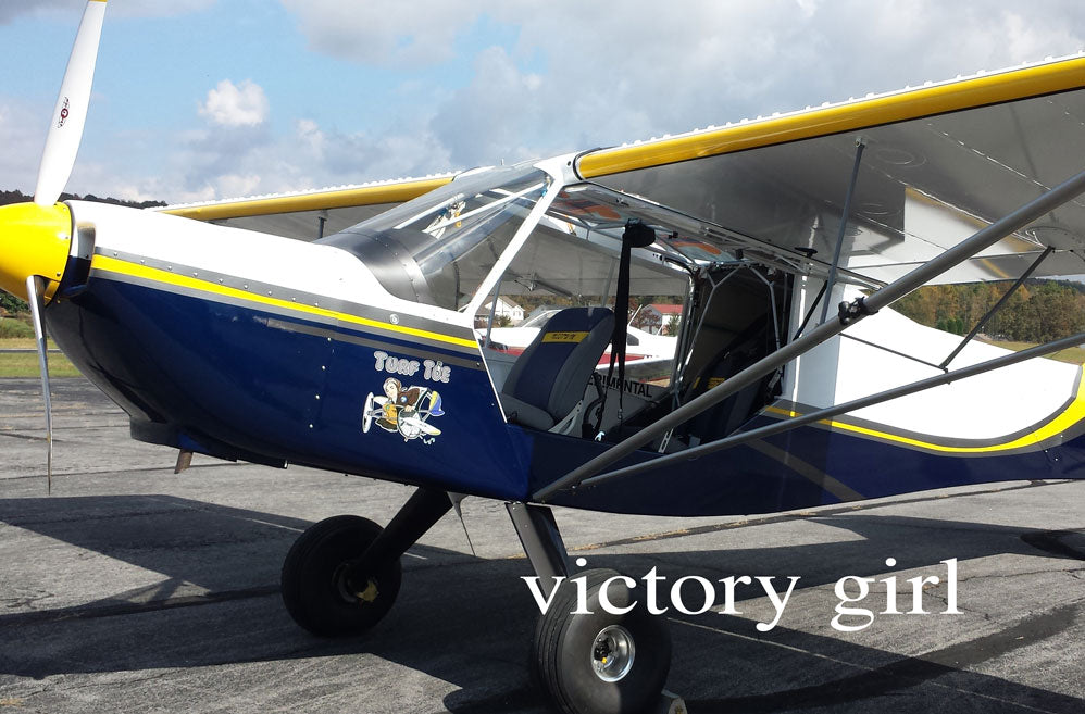 Victory Girl Nose Art Gallery