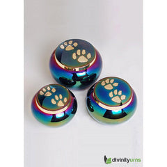 Buddy Rainbow Pet Cremation Urn- Medium, Dog Urn - Divinity Urns