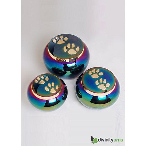 Buddy Rainbow Pet Cremation Urn- Small, Dog Urn - Divinity Urns.