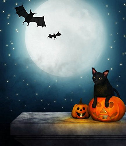 Halloween Hallowmas Pumpkin Cat Moon Photography Studio Backdrop Background